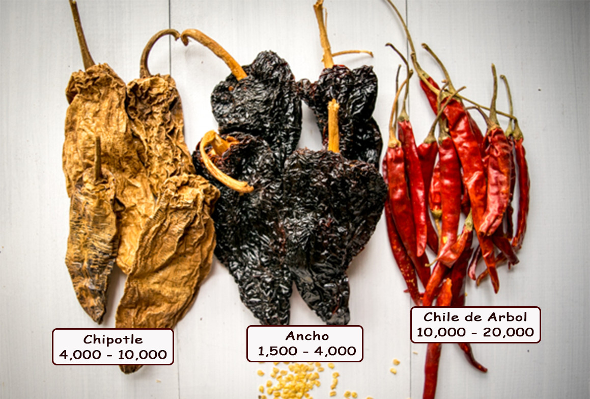 dried chili peppers chipotle ancho chile de arbol
