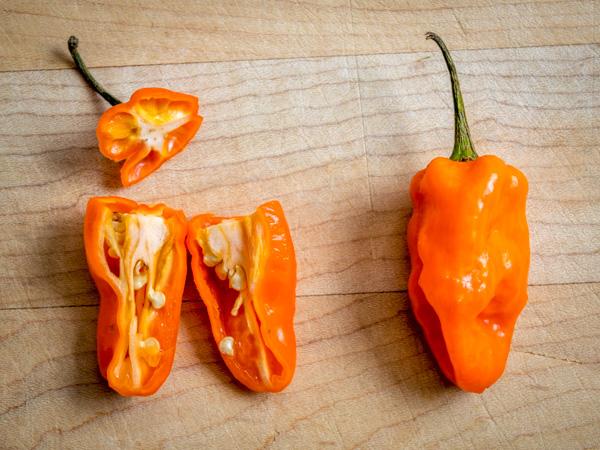 habanero peppers closeup