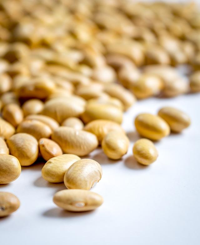 Peruano Beans (aka Canary, Mayocabo, Peruvian, Mexican Yellow Beans) mexicanplease.com
