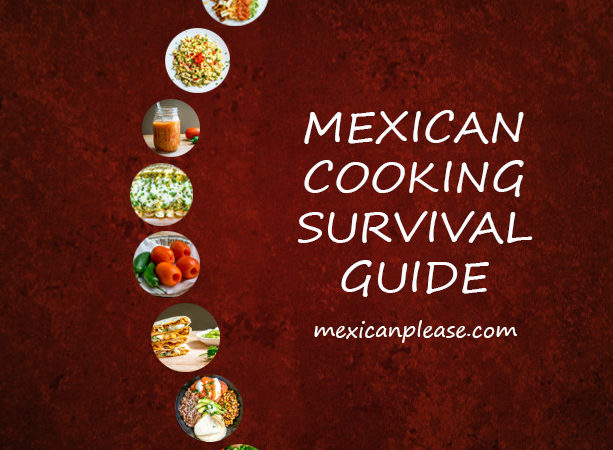 Mexican Cooking Survival Guide mexicanplease.com