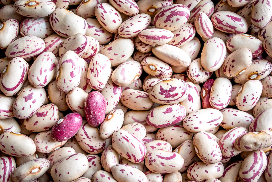 You can think of these Cranberry Beans as Pinto Beans Lite. They have a similar flavor to pintos but are creamier and slightly less 'beany'. A great option for refried beans. mexicanplease.com