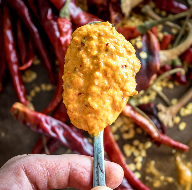 Chile de Arbols and roasted peanuts create a rich, otherworldly flavor in this delightful Peanut Chile Salsa. It's versatile too; feel free to get creative with the chili pepper combos. mexicanplease.com