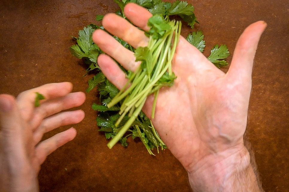 I think this is the best way to chop cilantro. Using the upper stems makes it so much easier! mexicanplease.com