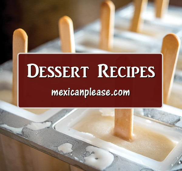 coconut horchata paleta dessert image