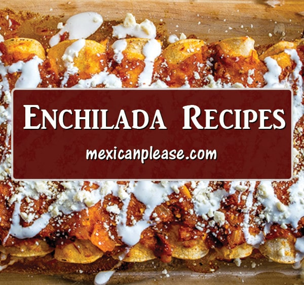 introduction to enchilada recipes