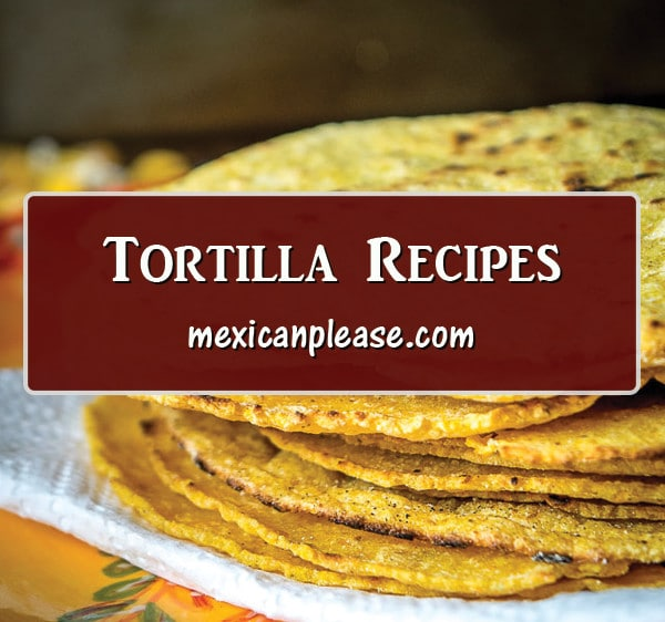 corn and flour tortilla recipes