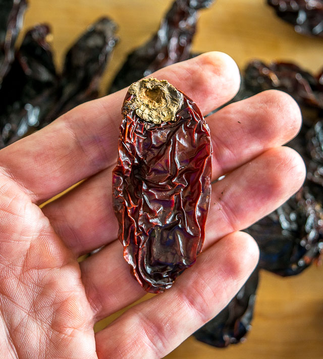Leftover stem on chile morita