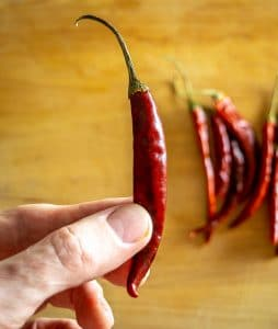 Single small Chile de Arbol