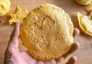 Corn tortilla just after cooking