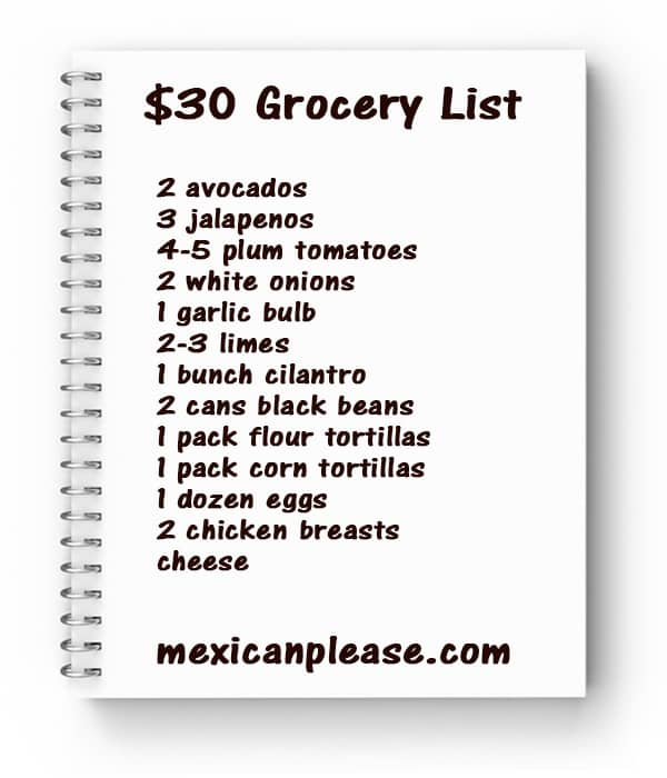 $30 Grocery List for College Students notebook list